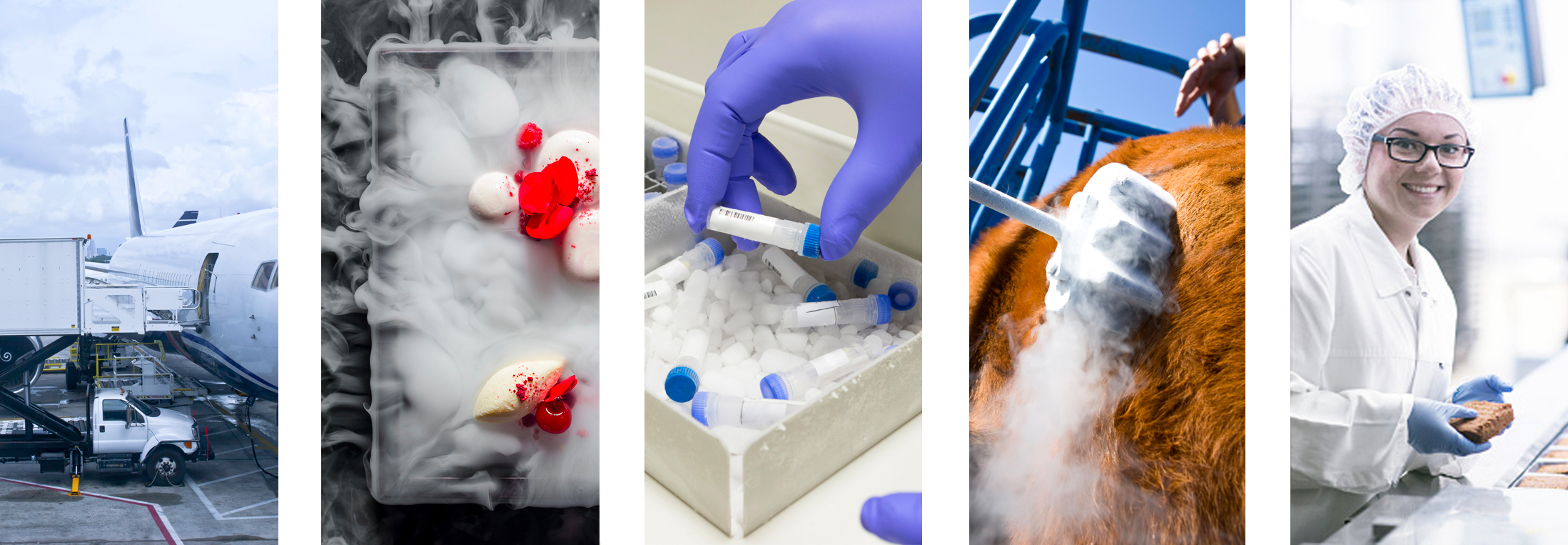 Dry Ice Applications